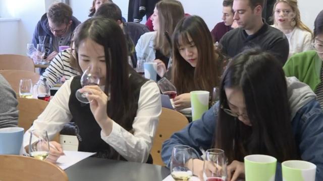 优雅的职业:中国学生赴法学品酒