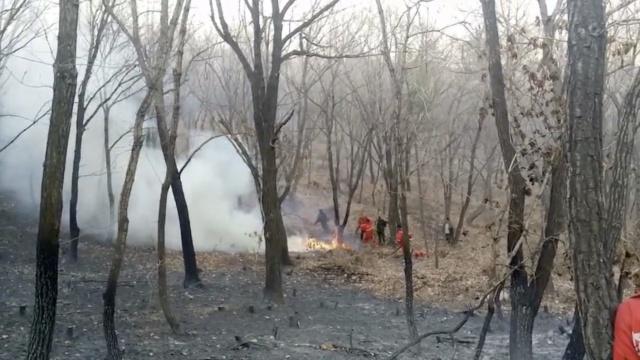 村民铲土+森林消防,扑灭山火