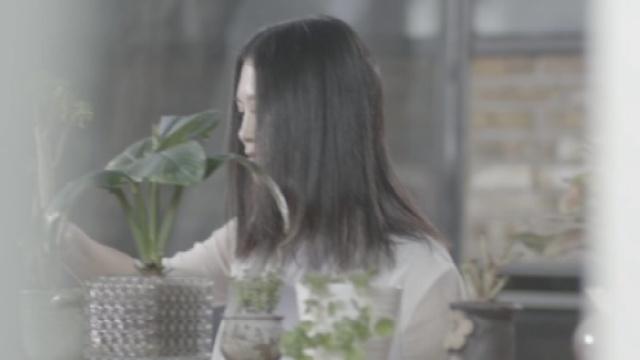 丽江小倩《我们的歌》关于我们的歌