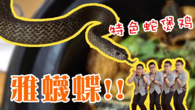广州︱是的,这东西能吃而且很好吃