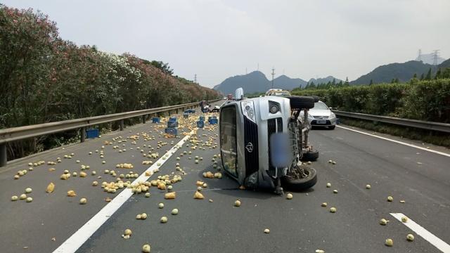货车爆胎翻车,1800斤桃子铺满高速