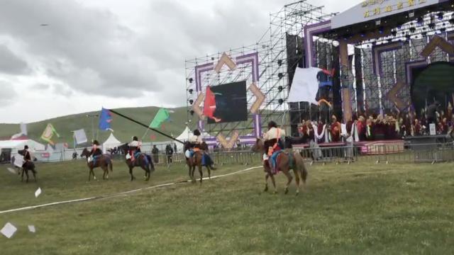 青藏高原最美季节:骑马赶牦牛赏花