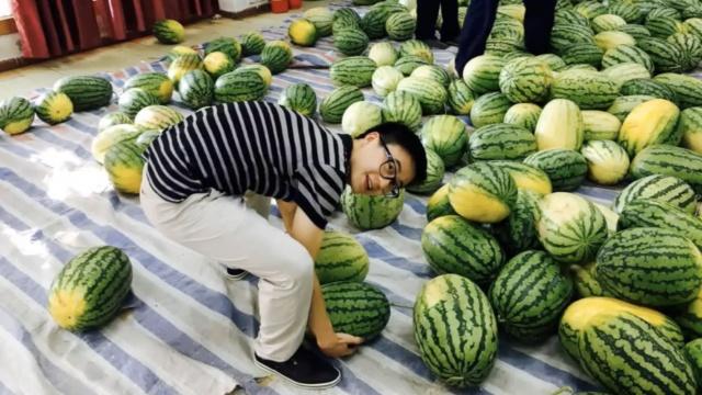 羡慕!郑州1高校买30吨瓜免费送师生