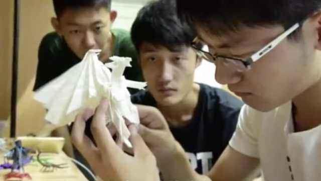 折纸少年孙洪涛:只想做个普通学生