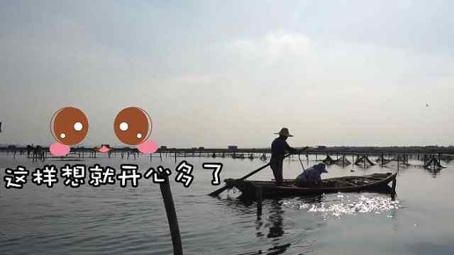 探访阳澄湖大闸蟹