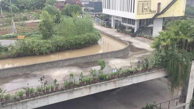 重庆工厂房顶建农场,员工种菜减压