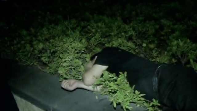 男子醉卧绿化带,陌生女子暖心守候