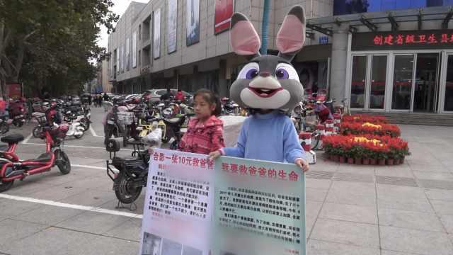 姐妹扮兔子站街头,为白血病父筹钱