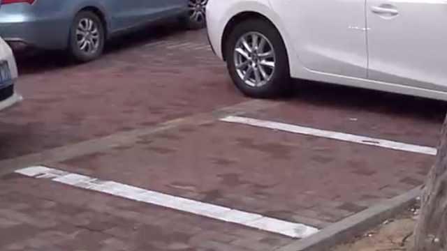 商户租人行道上的停车位,被贴罚单