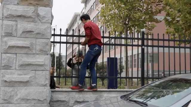 外卖禁入校,小哥爬墙递学生隔栏取