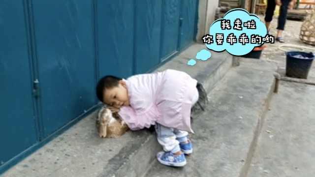 3岁女童把鸭子当