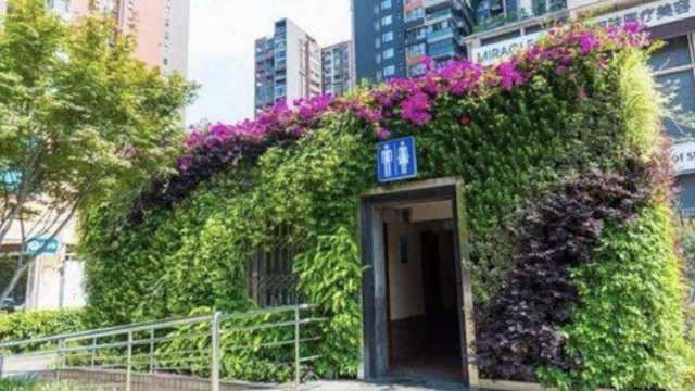 成都最美公厕,植物簇拥似绿野仙踪