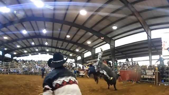 斗牛顶翻斗牛士,后面小哥吓得爬竿