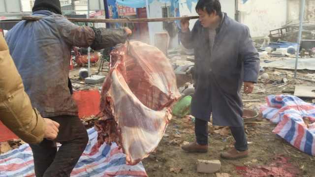 黄牛当街被宰杀卖肉,同伴瑟瑟发抖