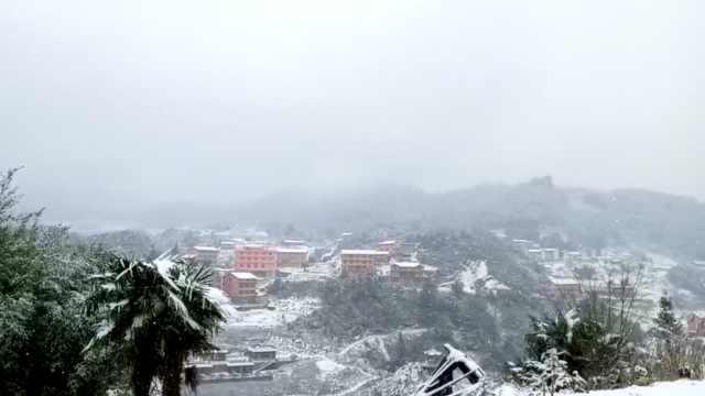 立春降瑞雪!綦江景区飘鹅毛大雪
