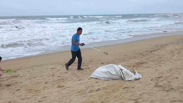 大叔海滩义务捡垃圾:看着太埋汰了