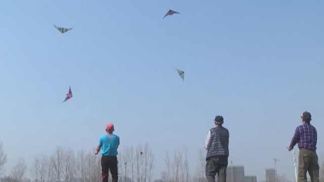 大爷公园飞特技风筝,空中舞芭蕾