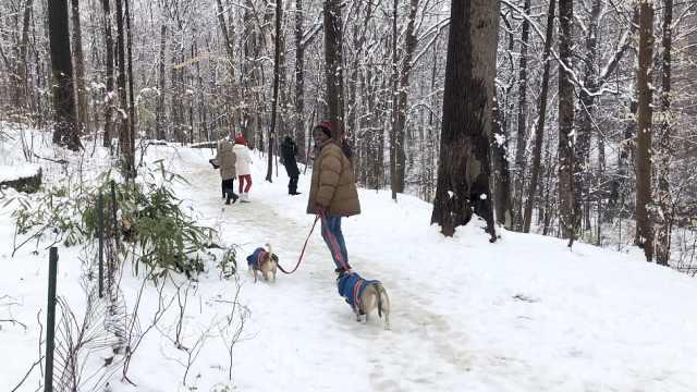 华盛顿最强春季暴雪!政府关门1天