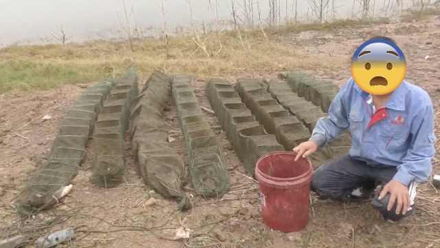 男子禁渔期内捕鱼虾,原因竟是馋了