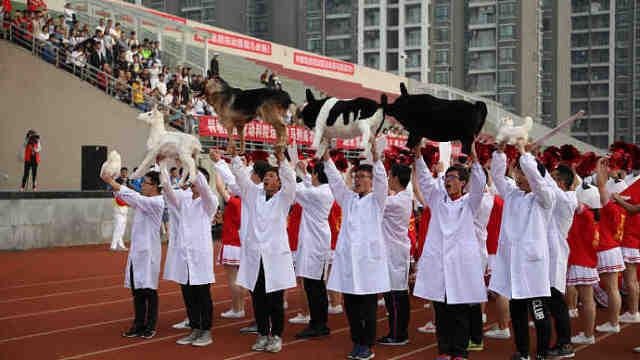 高校开运动会,学生拿动物标本入场
