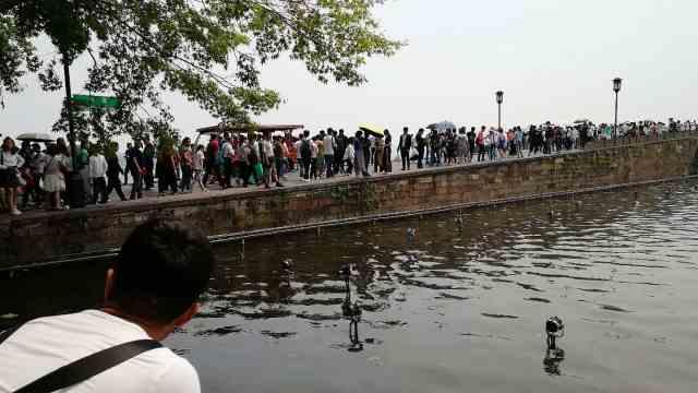 40万人游西湖,网友:断桥真要断了