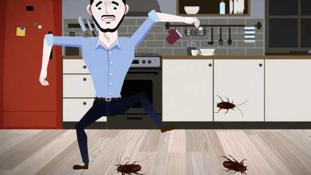 """涨姿势:蟑螂为什么如此""""小强""""?"""