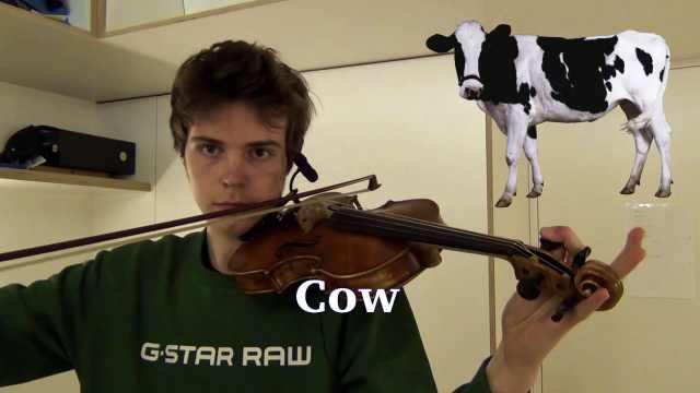 会玩!牛人小提琴模仿9种动物叫声