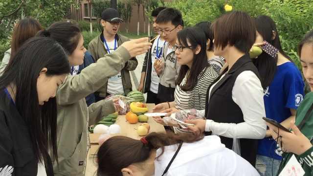 高校520发水果,单身学生:充满酸味