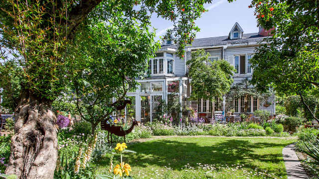安徽女教师在家造了400㎡秘密花园