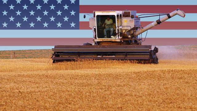 美国人宁愿赔钱也要大量出口粮食?