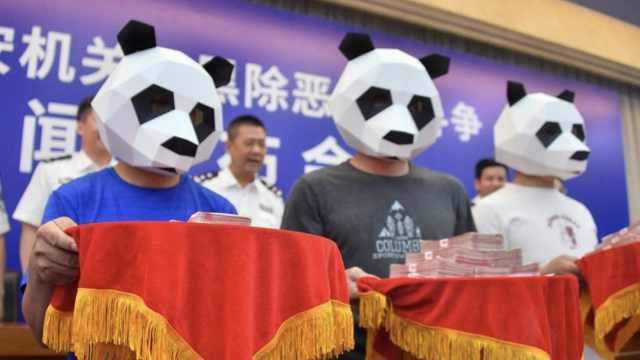 举报涉黑犯罪,3人戴熊猫头套领50万