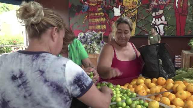 怕食物浪费,加州人免费送穷人水果