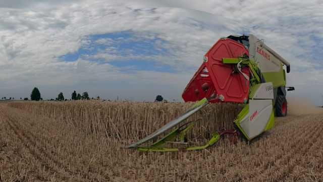 行云流水!大型收割机如此收割小麦