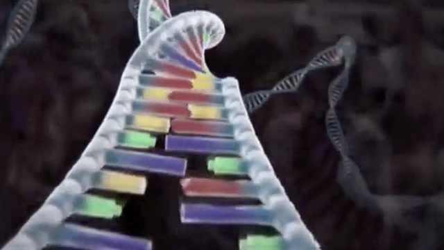 改变基因就能消除缺陷,美梦有多远