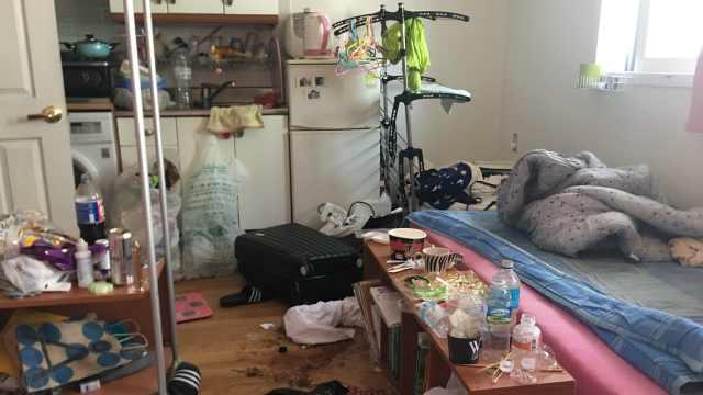 大学生在韩欠租消失:屋内垃圾生蛆