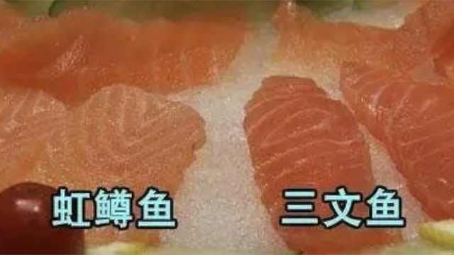 虹鳟归入三文鱼,网友热议:指鹿为马