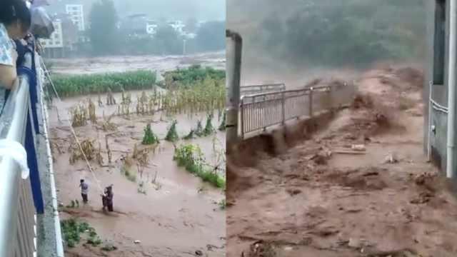 四川暴雨洪水肆虐,车如浮萍被冲跑