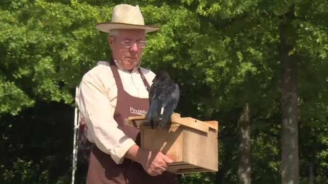 公园想出妙招,请乌鸦帮忙捡垃圾