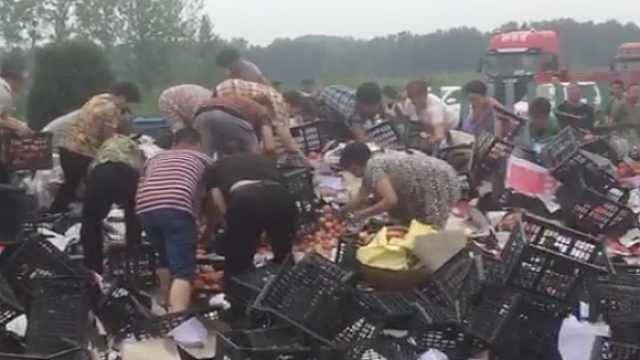 货车侧翻高速,村民哄抢番茄拦不住