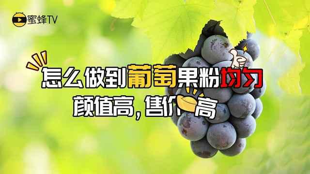 怎么做到葡萄果粉均匀?