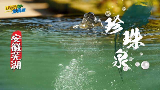 自然景观未解之谜:安徽珍珠泉