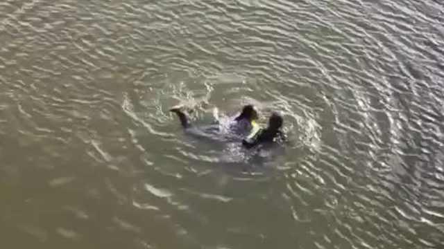 女子落水,他扔下救生圈后跳河勇救