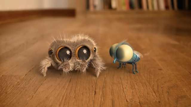小蜘蛛Lucas的新伙伴:超萌小蜜蜂
