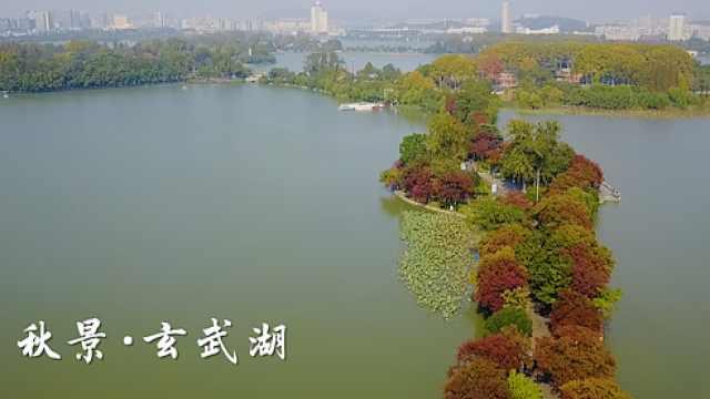 """""""金陵明珠""""玄武湖,自带仙气"""