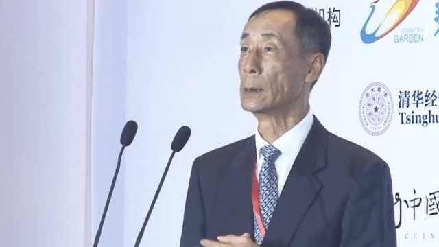 秦晓:新经济还不能支撑中国发展