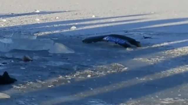 父女失踪3天,所乘车辆疑被冰封河下