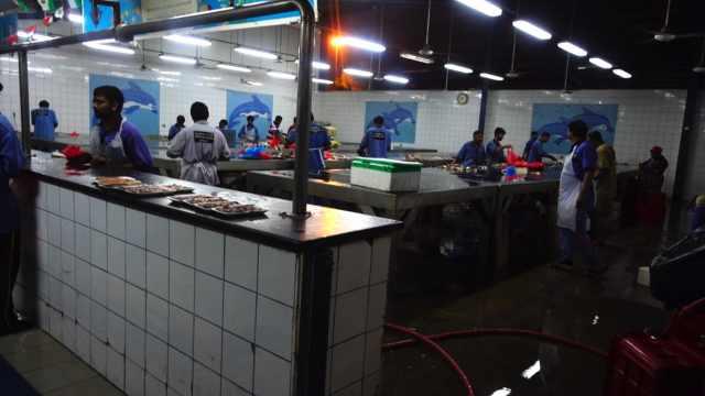 迪拜当地的海鲜鱼市场,味道真独特