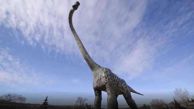 探索加拿大最权威的古生物博物馆