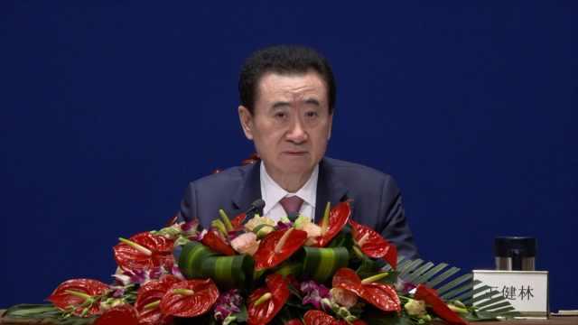 王健林:万达发自内心感谢改革开放