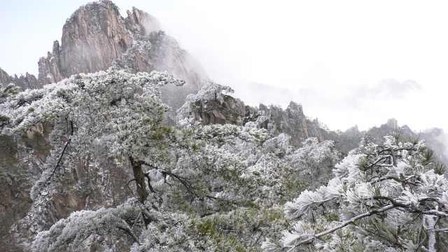 黃山雪后初晴,霧凇云海齊現如仙境